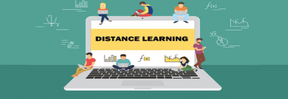 Elementary Distant Learning